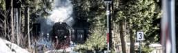 Harzer Schmalspurbahn Fotoreportage